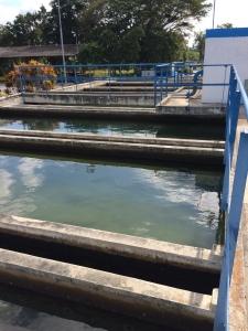 Reutilizacion de Aguas