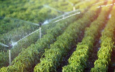 Reutilización de aguas residuales para riego en la agricultura