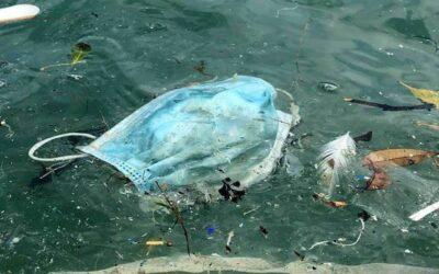 Desechar incorrectamente guantes y mascarillas produce la contaminación de ríos y mares