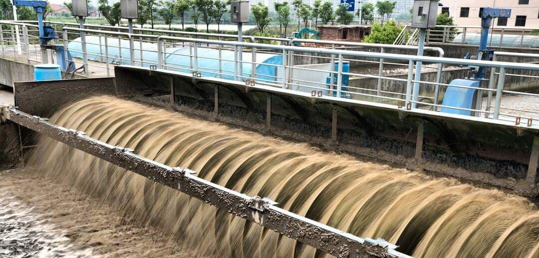 Tratamiento de lodos de depuración de aguas residuales y el potencial de su reutilización BlueGold