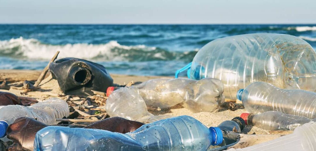 Lanzan 25 botellas marcadas con el mensaje de la sostenibilidad