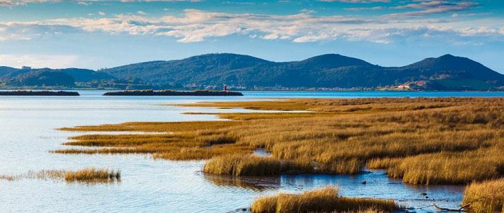 Un Día Mundial para recordarnos la importancia de los humedales como fuente de agua Bluegold