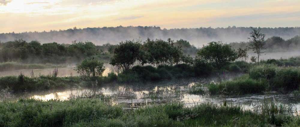 Una investigación sobre 48 ciudades resalta la importancia de la naturaleza para la desinfección en el saneamiento del agua Blue Gold