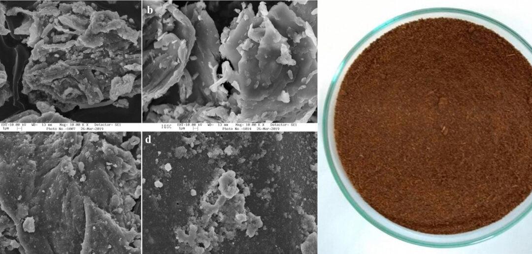 Residuos de la extracción de azúcar con aplicaciones en el tratamiento del agua