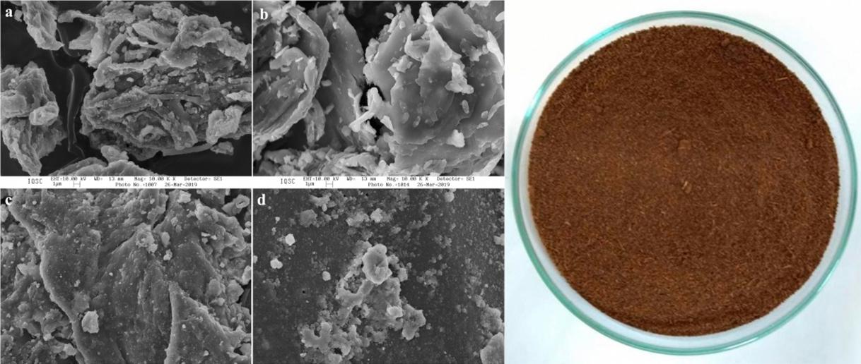 Residuos de la extracción de azúcar con aplicaciones en el tratamiento del agua Bluegold